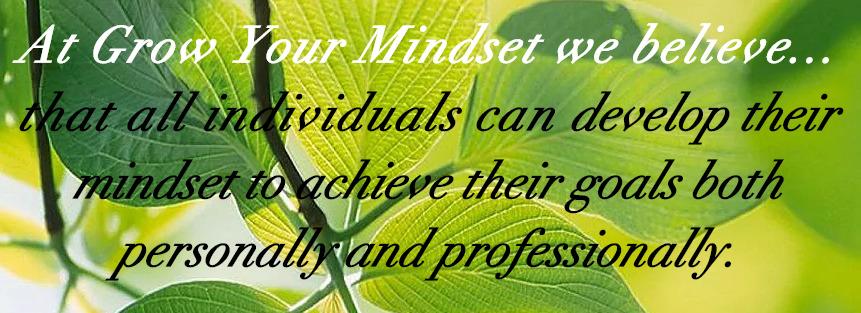 Developing an Understanding of Mindset